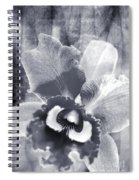 One Song Spiral Notebook