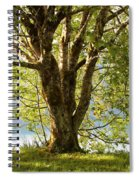 One Spring Tree Spiral Notebook