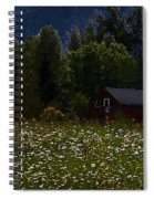 One Starry Summer Night Spiral Notebook