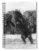 One Trick Pony Spiral Notebook
