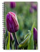 One Tulip Among Many Spiral Notebook