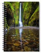 Oneonta Falls Spiral Notebook