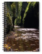 Onieata Gorge Spiral Notebook
