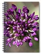 Onion Flower Spiral Notebook