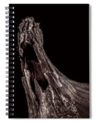 Onion Skin Two Spiral Notebook