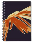 Only One Spiral Notebook
