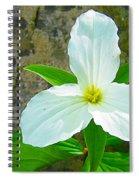 Ontario Trillium Spiral Notebook