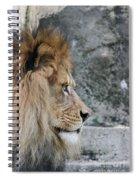 Onyo #15 Spiral Notebook