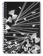 Oodles Of Noodles #2 Spiral Notebook