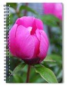 Open Heart Spiral Notebook