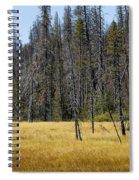 Open Meadow 2 Spiral Notebook