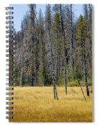 Open Meadow Glacier National Park Spiral Notebook