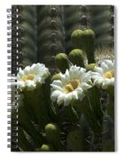 Open To The Sun Spiral Notebook