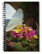 Open Wings Spiral Notebook