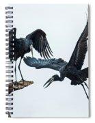 Openbill Storks Flying, Tarangire Spiral Notebook