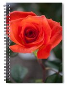 Opened Rose Bud Spiral Notebook
