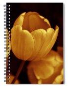 Opening Tulip Flower Golden Monochrome Spiral Notebook
