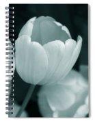 Opening Tulip Flower Teal Monochrome Spiral Notebook