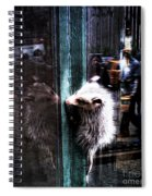 Opossum In The City Spiral Notebook