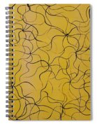 Oracles Of Light Spiral Notebook