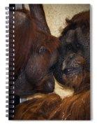 Orangatang Love Spiral Notebook
