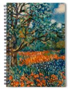 Orange And Blue Flower Field Spiral Notebook