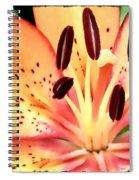 Orange And Pink Flower Spiral Notebook