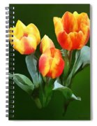 Orange And Yellow Tulips Spiral Notebook