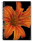 Orange Spiral Notebook