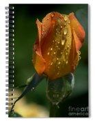 Orange Bud Spiral Notebook