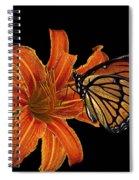 Orange Butterfly Spiral Notebook