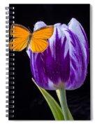 Orange Butterfly On Purple Tulip Spiral Notebook