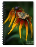Orange Butterfly With Black Dots Sitting Onthe Red And Yellow Long Petaled Flowers Spiral Notebook