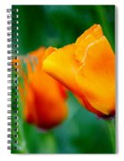 Orange California Poppies Spiral Notebook