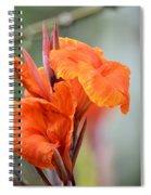 Orange Cana Spiral Notebook