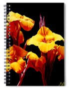 Orange Cannas Spiral Notebook