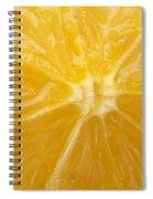 Orange Closeup Spiral Notebook