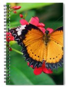 Orange Common Lacewing Butterfly Spiral Notebook