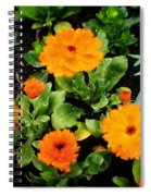Orange Country Flowers - Series I Spiral Notebook