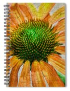 Orange Crackle Spiral Notebook