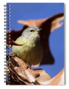 Orange-crowned Warbler - Feather Lite Spiral Notebook