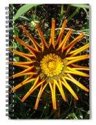 Orange Curl Spiral Notebook