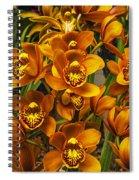 Orange Cymbidium Spiral Notebook