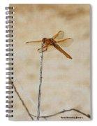 Orange Dragonfly Spiral Notebook