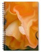 Orange Fantasy Begonia Flower Spiral Notebook