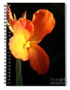 Orange Flower Canna Spiral Notebook