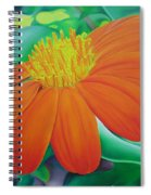 Orange Flower Spiral Notebook