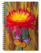 Orange Gray Butterfly On Mum Spiral Notebook
