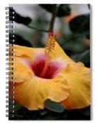 Orange Hibiscus Spiral Notebook