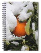Orange In Snow Spiral Notebook